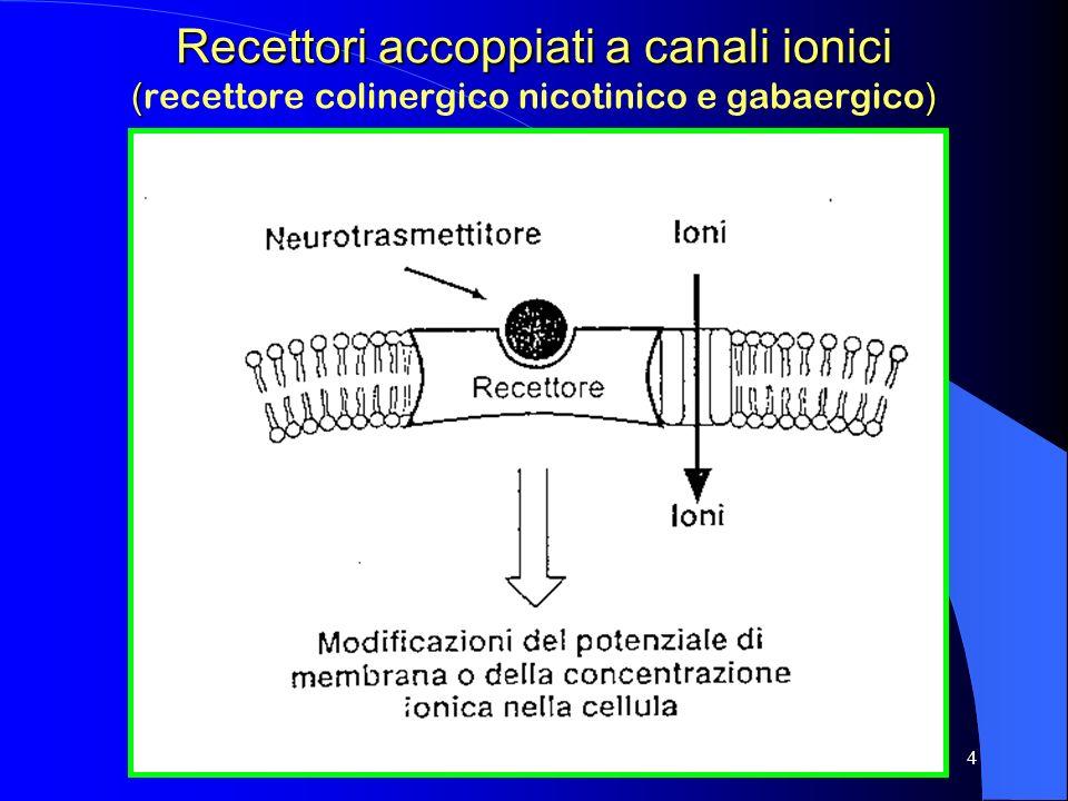 Recettori accoppiati a canali ionici (recettore colinergico nicotinico e gabaergico)