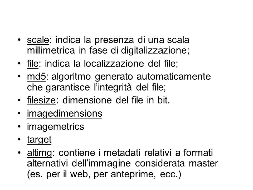 scale: indica la presenza di una scala millimetrica in fase di digitalizzazione;