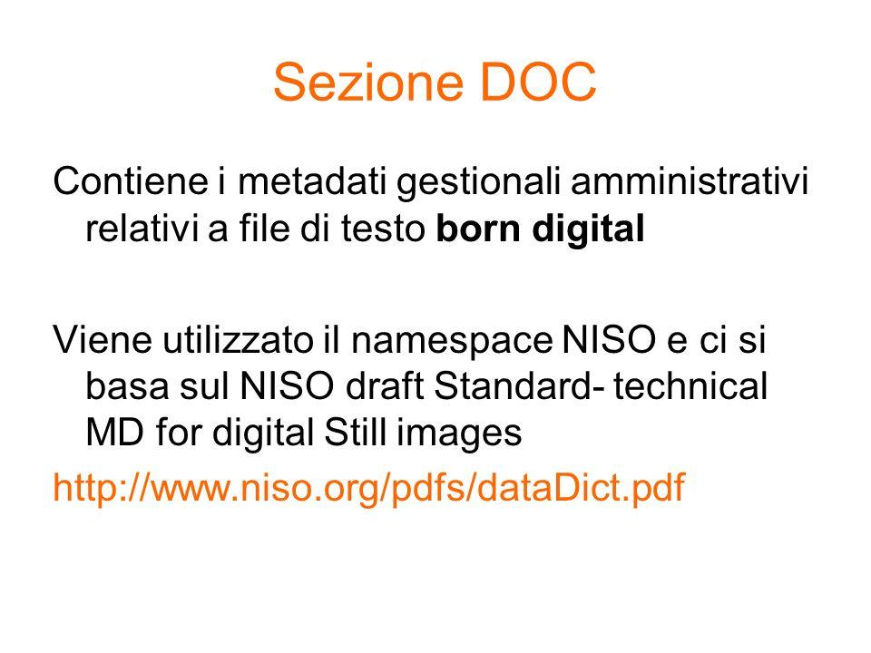 Sezione DOC Contiene i metadati gestionali amministrativi relativi a file di testo born digital.