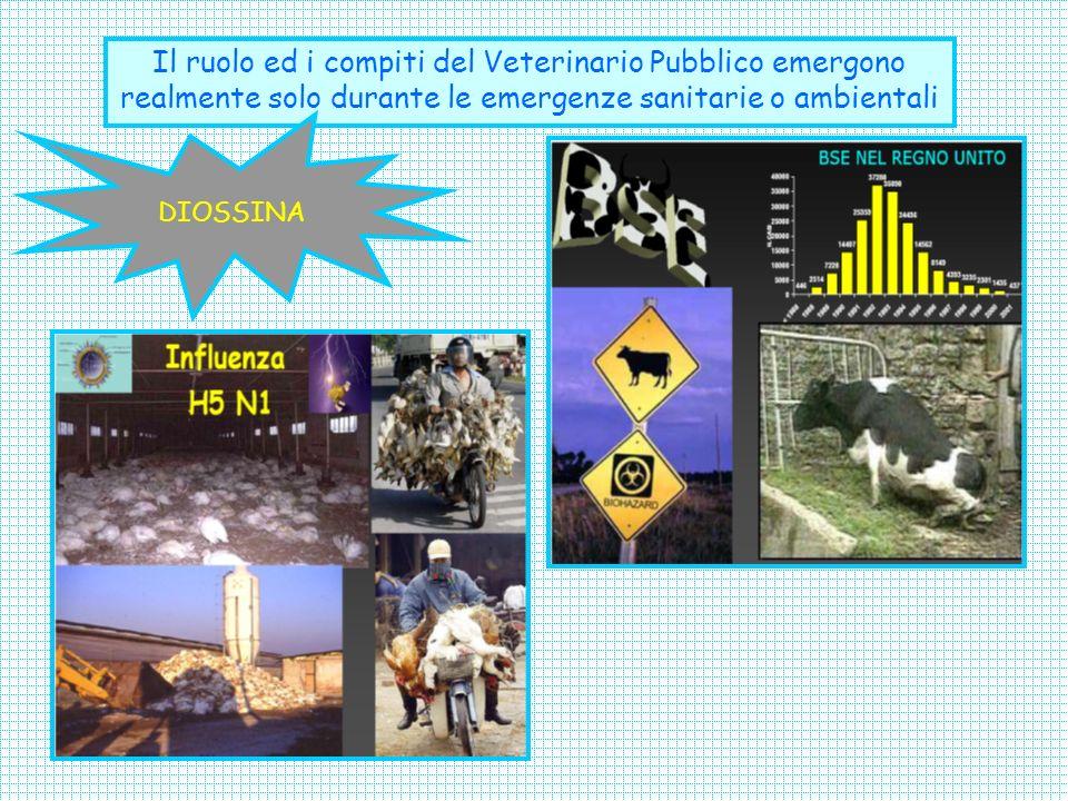 Il ruolo ed i compiti del Veterinario Pubblico emergono realmente solo durante le emergenze sanitarie o ambientali