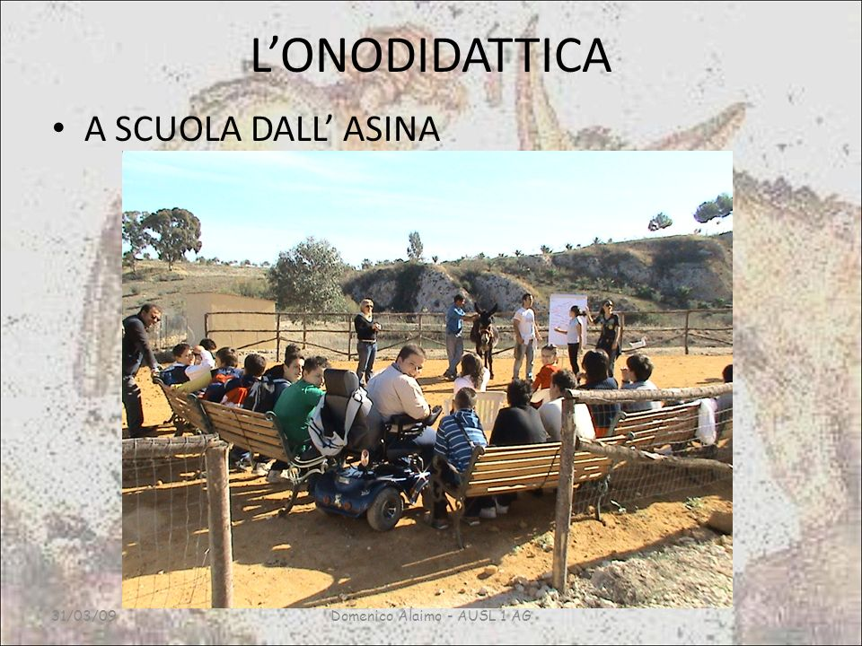 Domenico Alaimo - AUSL 1 AG