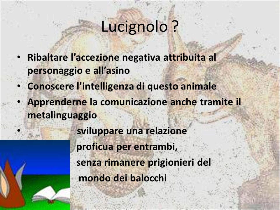 Lucignolo Ribaltare l'accezione negativa attribuita al personaggio e all'asino. Conoscere l'intelligenza di questo animale.