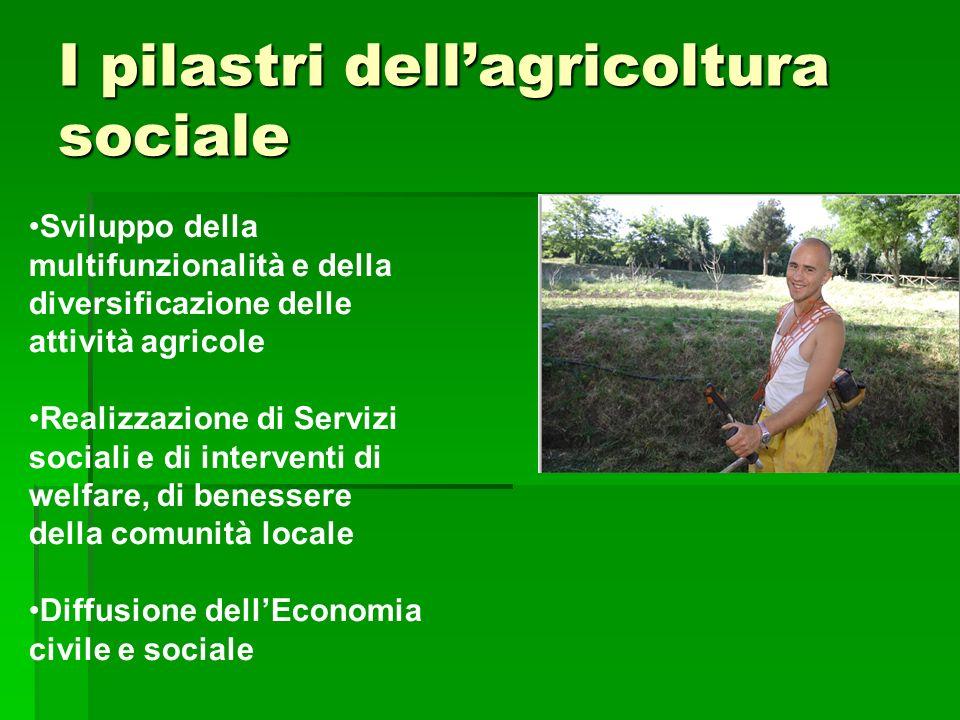 I pilastri dell'agricoltura sociale