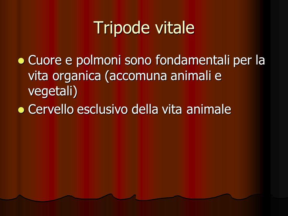 Tripode vitale Cuore e polmoni sono fondamentali per la vita organica (accomuna animali e vegetali)