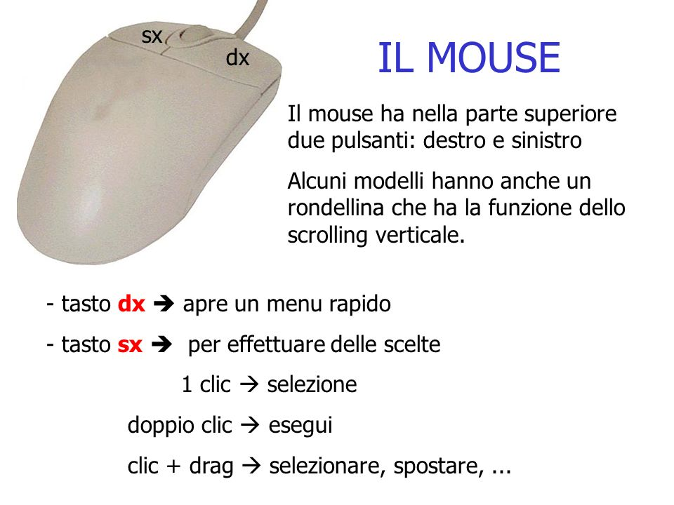 sx IL MOUSE. dx. Il mouse ha nella parte superiore due pulsanti: destro e sinistro.