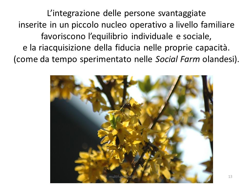 L'integrazione delle persone svantaggiate