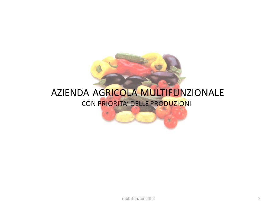 AZIENDA AGRICOLA MULTIFUNZIONALE