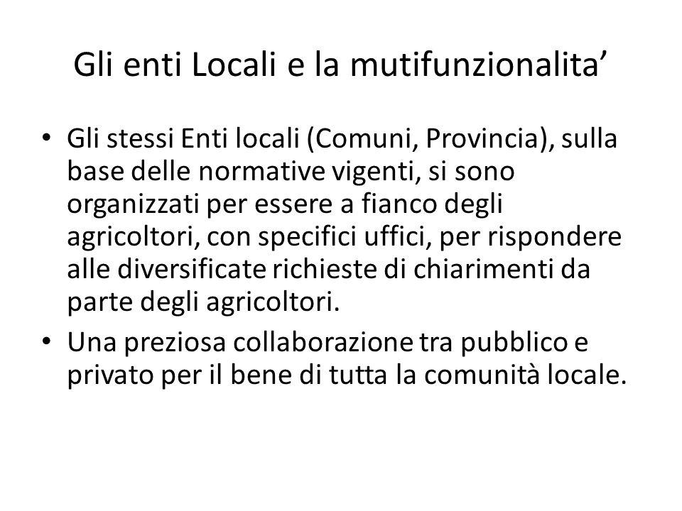 Gli enti Locali e la mutifunzionalita'
