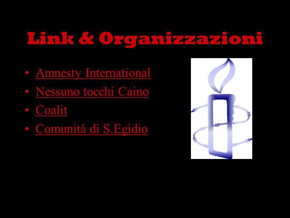 Link & Organizzazioni Amnesty International Nessuno tocchi Caino