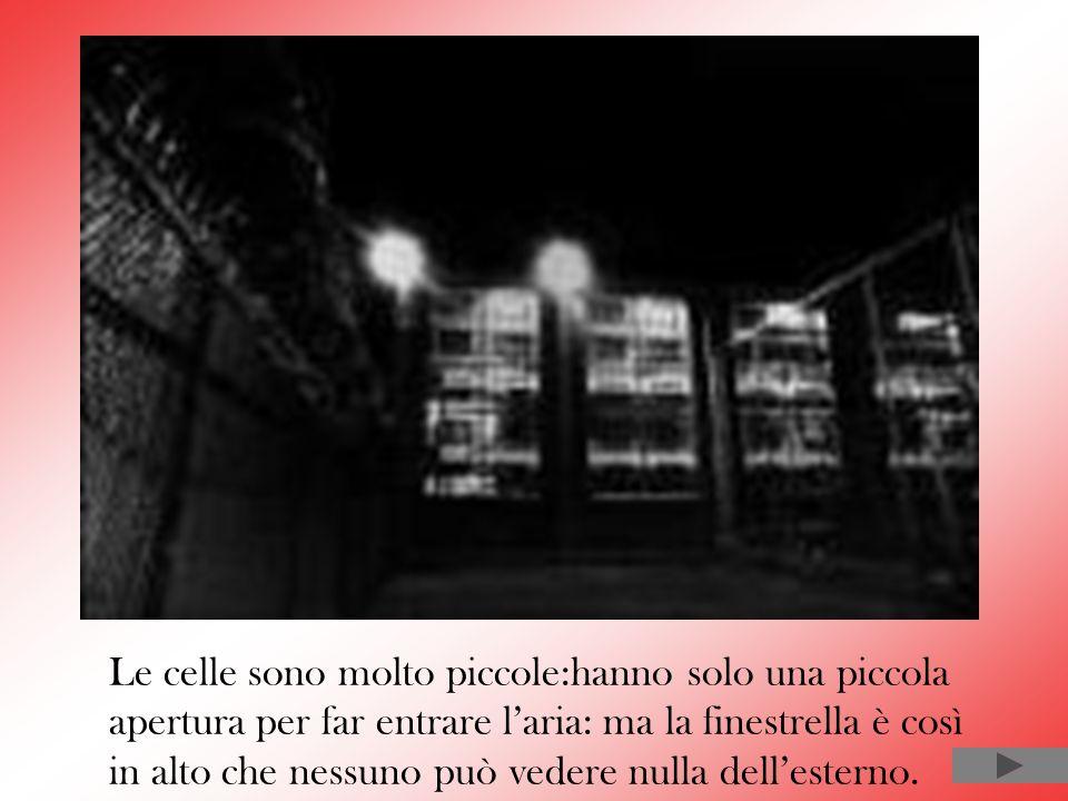 Le celle sono molto piccole:hanno solo una piccola apertura per far entrare l'aria: ma la finestrella è così in alto che nessuno può vedere nulla dell'esterno.