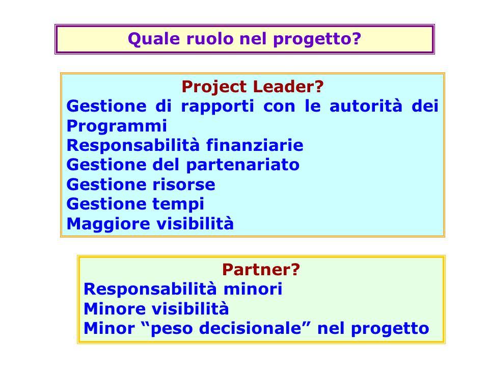 Quale ruolo nel progetto