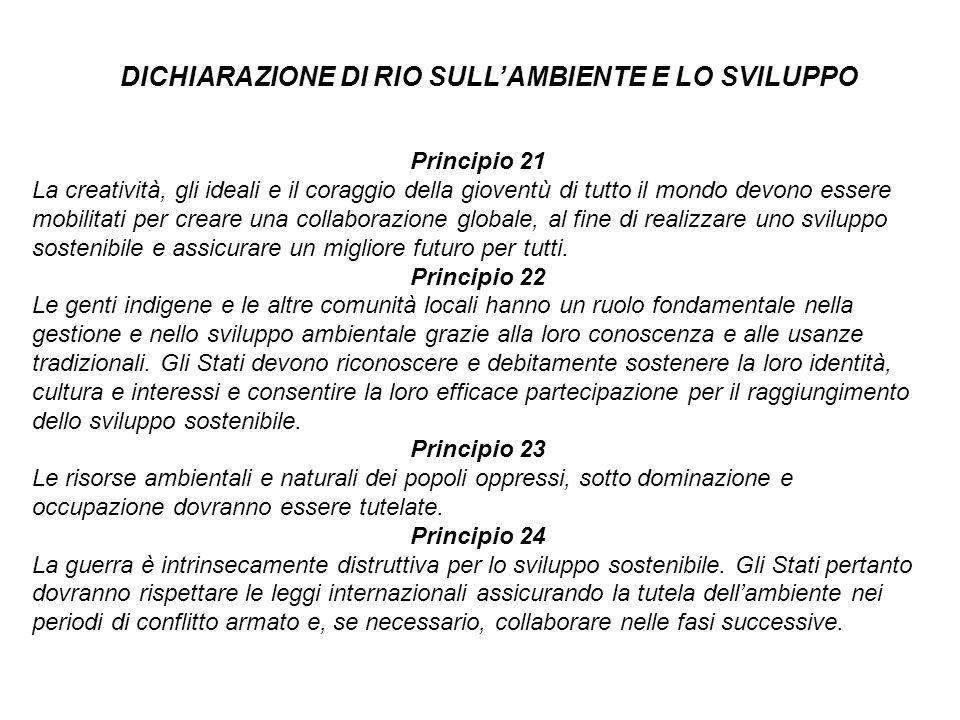 DICHIARAZIONE DI RIO SULL'AMBIENTE E LO SVILUPPO