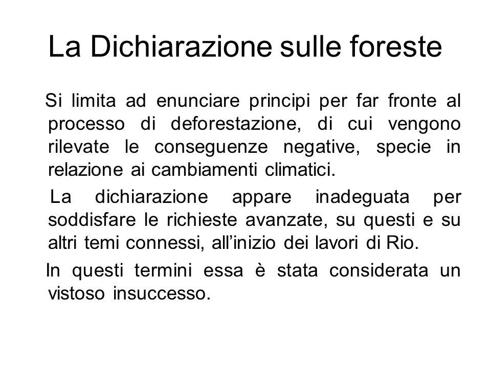 La Dichiarazione sulle foreste