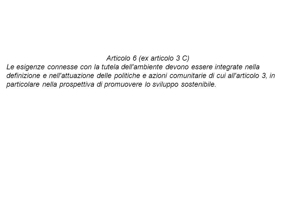 Articolo 6 (ex articolo 3 C)
