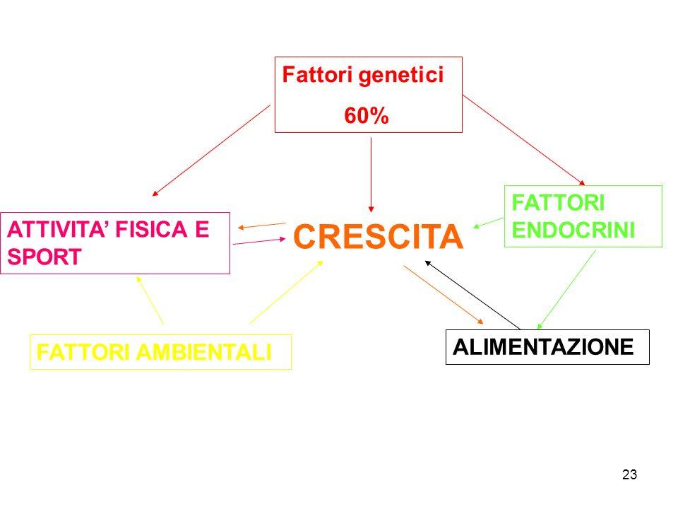 CRESCITA Fattori genetici 60% FATTORI ENDOCRINI