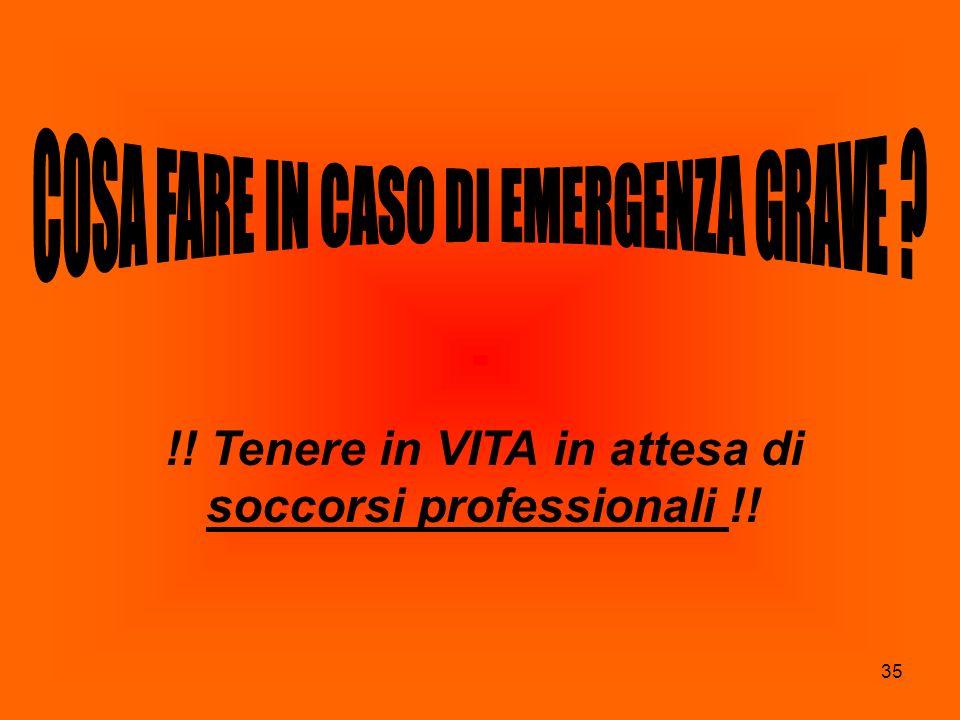 !! Tenere in VITA in attesa di soccorsi professionali !!