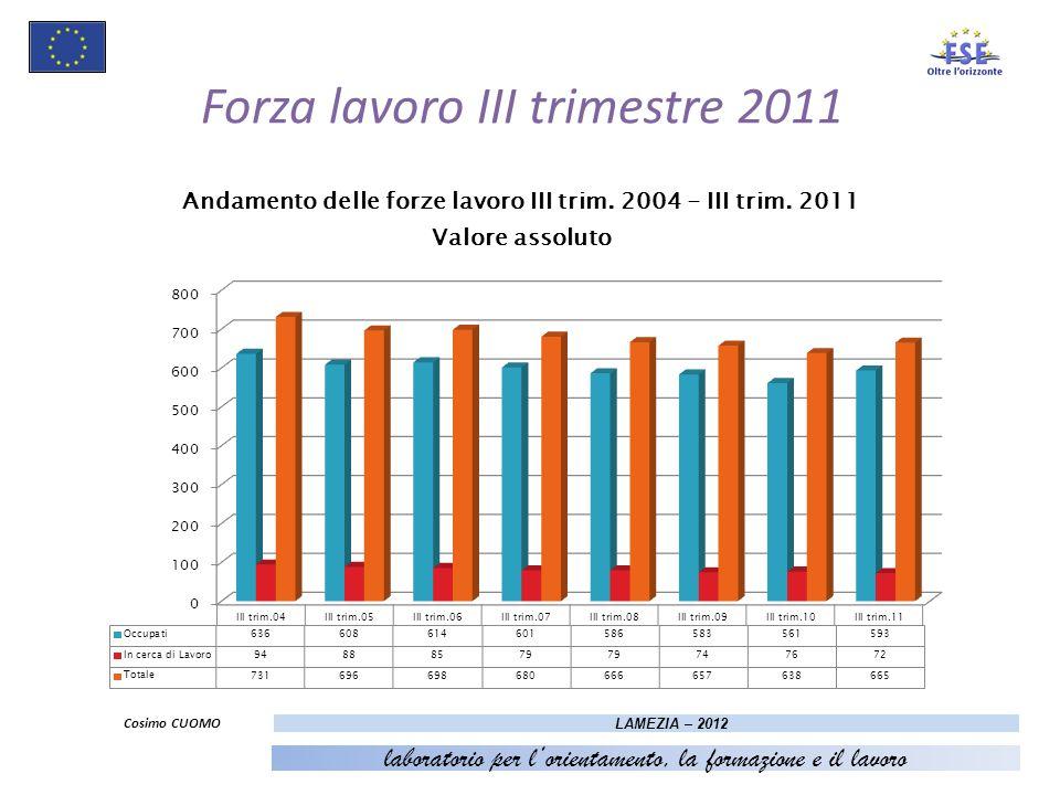 Forza lavoro III trimestre 2011