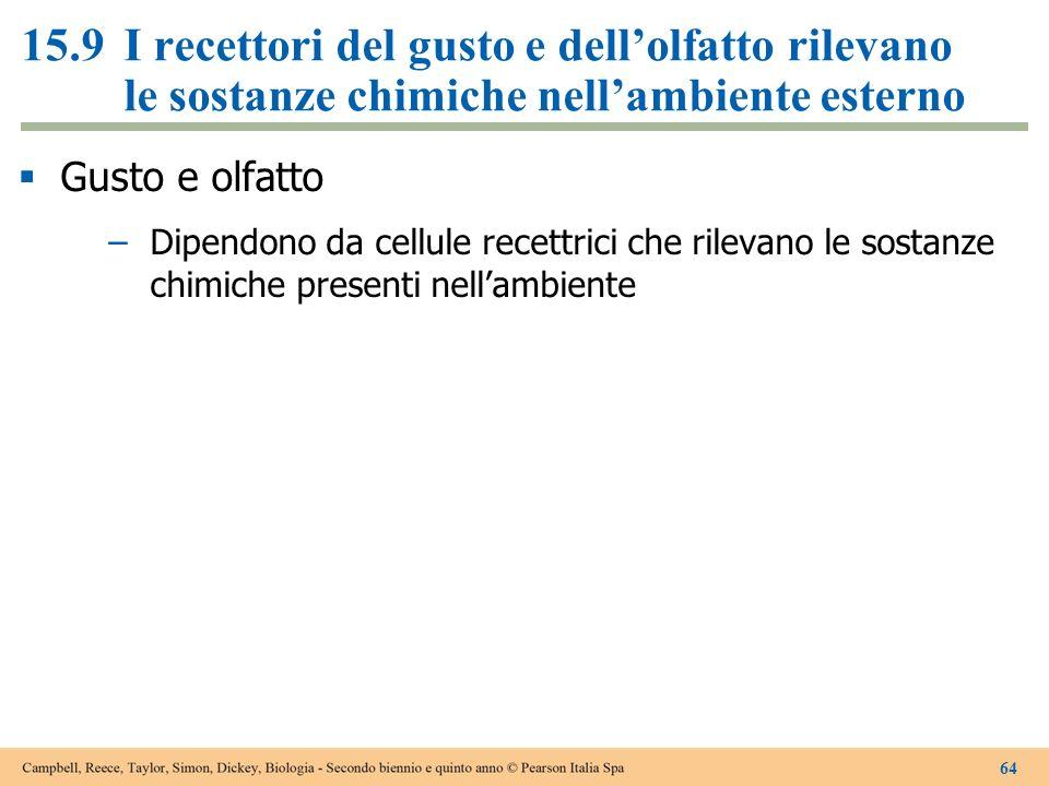 15.9 I recettori del gusto e dell'olfatto rilevano le sostanze chimiche nell'ambiente esterno