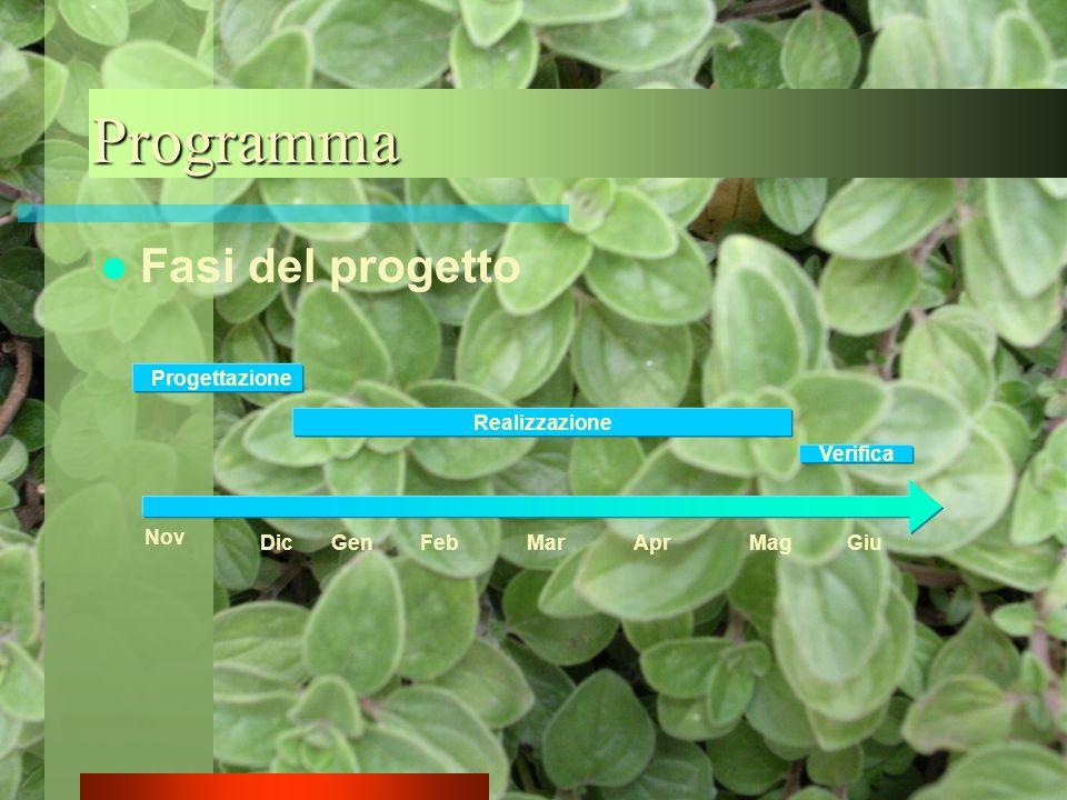 Programma Fasi del progetto Progettazione Realizzazione Verifica Nov