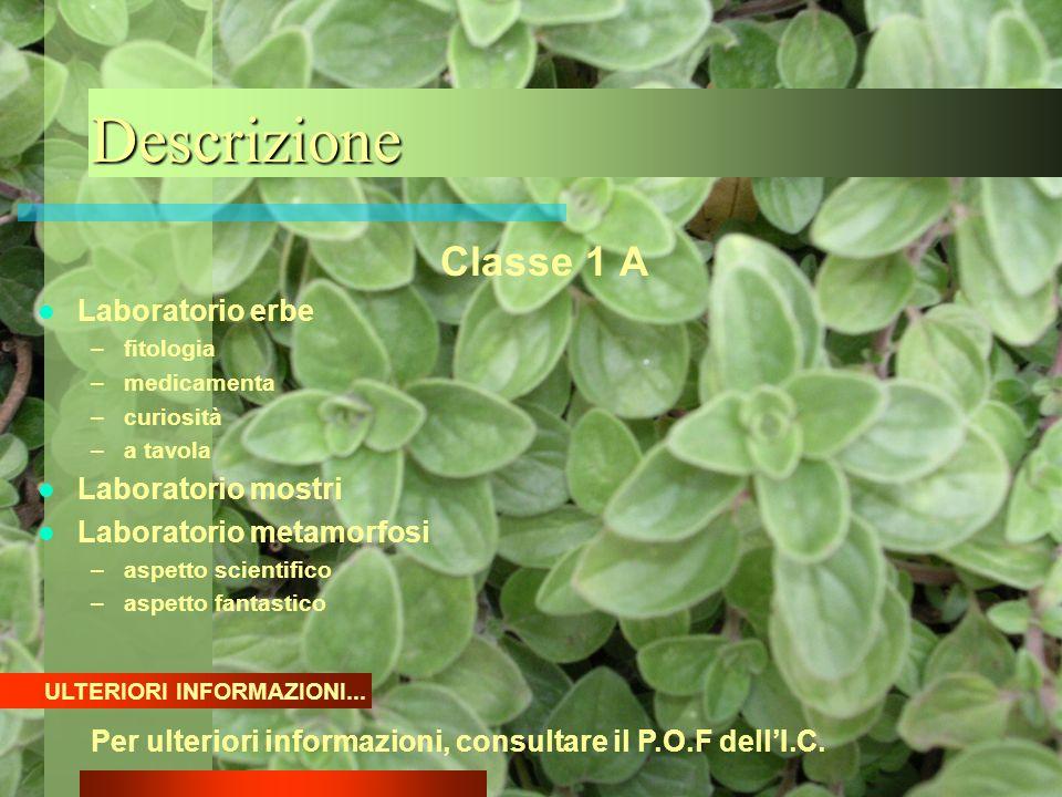 Descrizione Classe 1 A Laboratorio erbe Laboratorio mostri