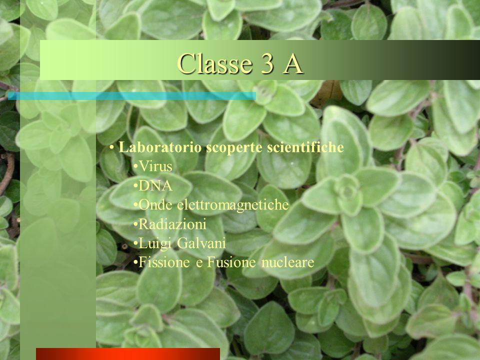 Classe 3 A Laboratorio scoperte scientifiche Virus DNA