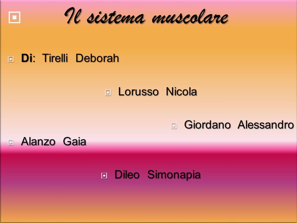 Il sistema muscolare Di: Tirelli Deborah Lorusso Nicola