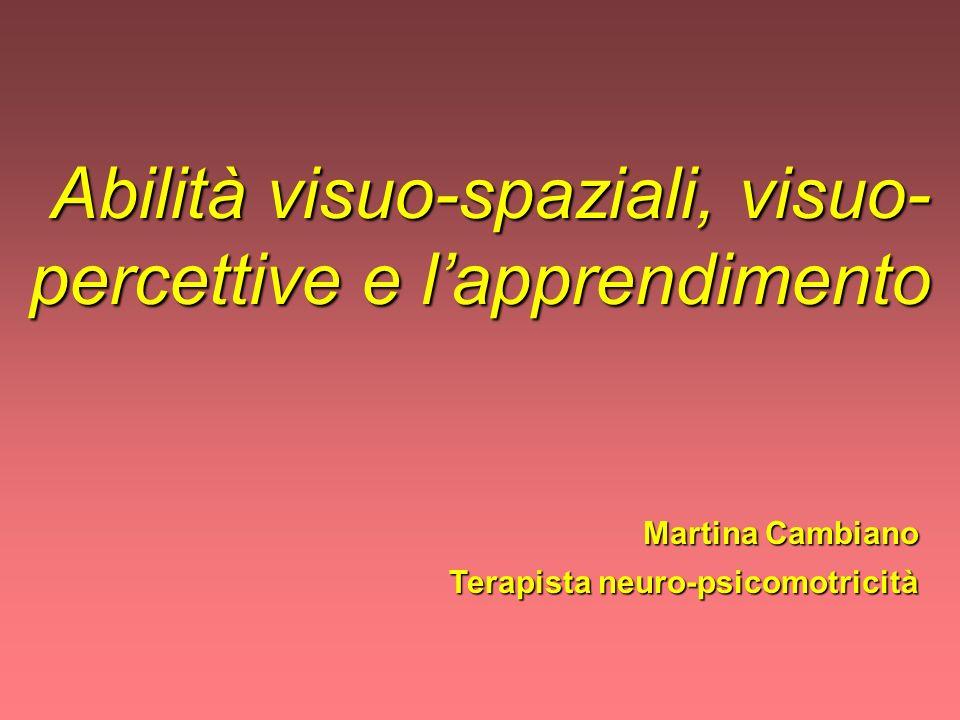 Abilità visuo-spaziali, visuo-percettive e l'apprendimento