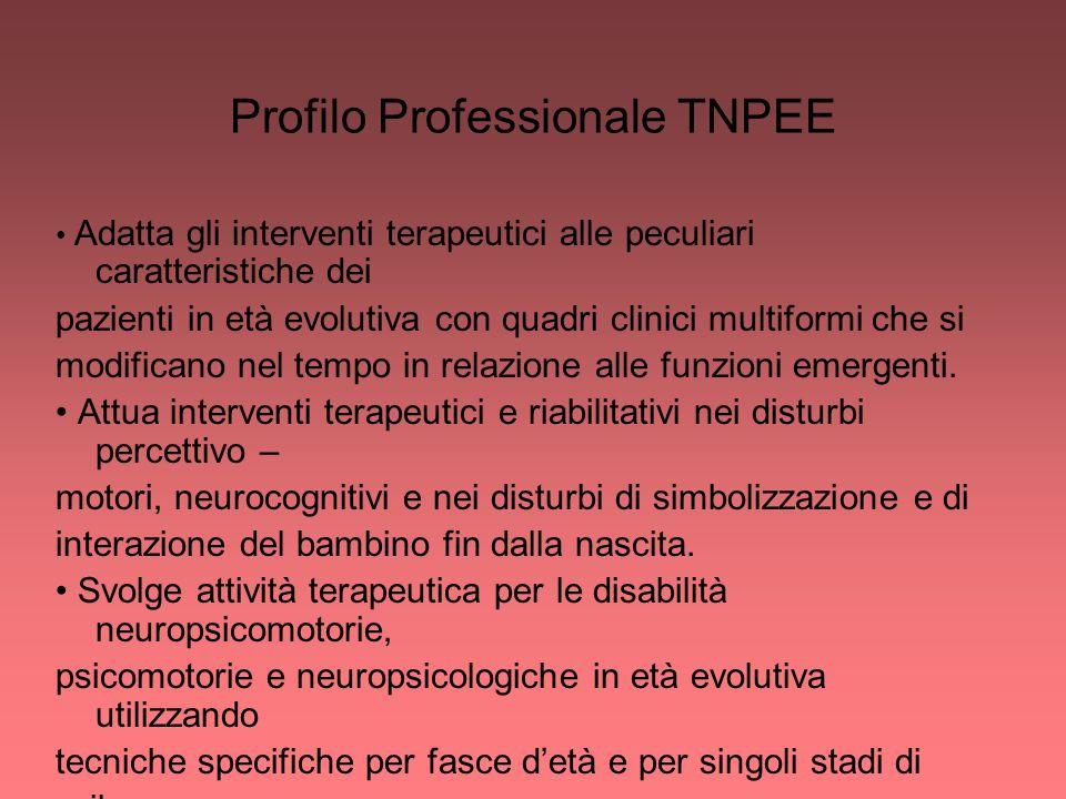 Profilo Professionale TNPEE
