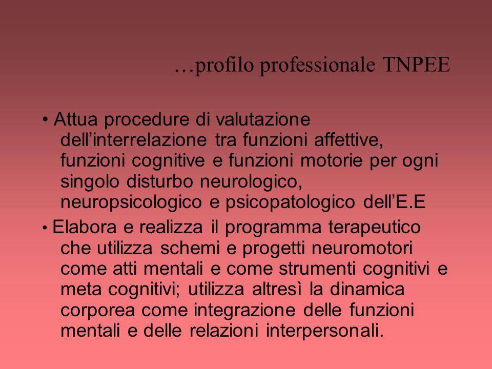 …profilo professionale TNPEE