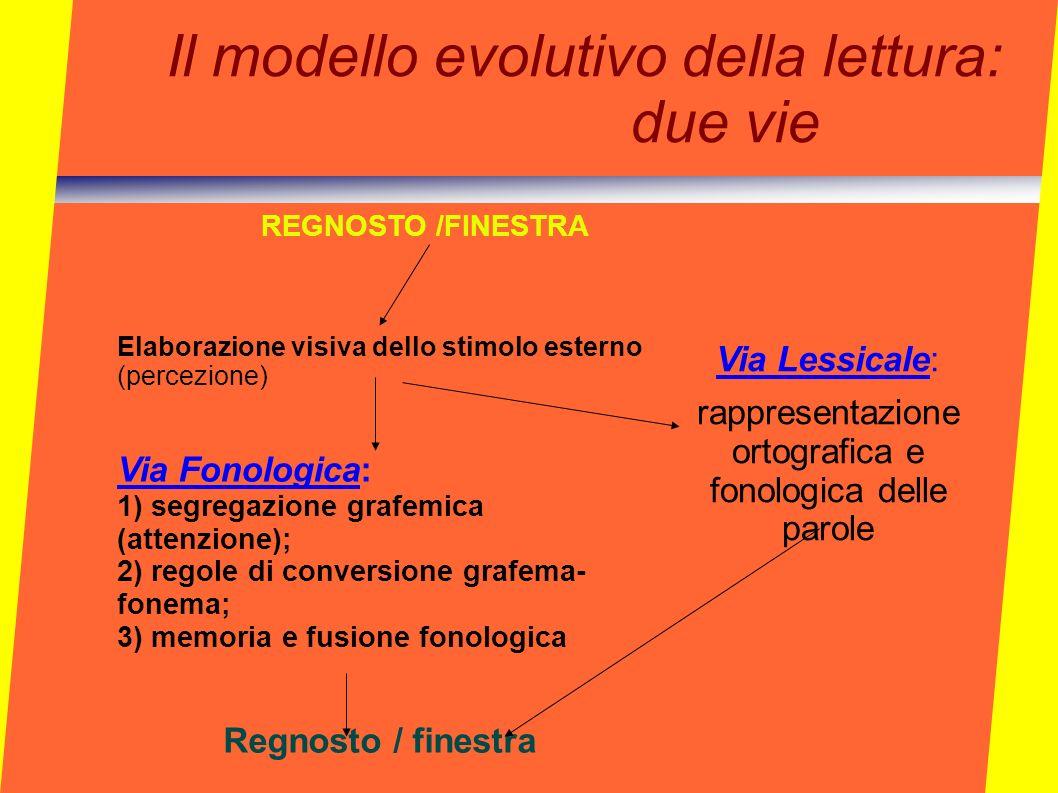 Il modello evolutivo della lettura: due vie