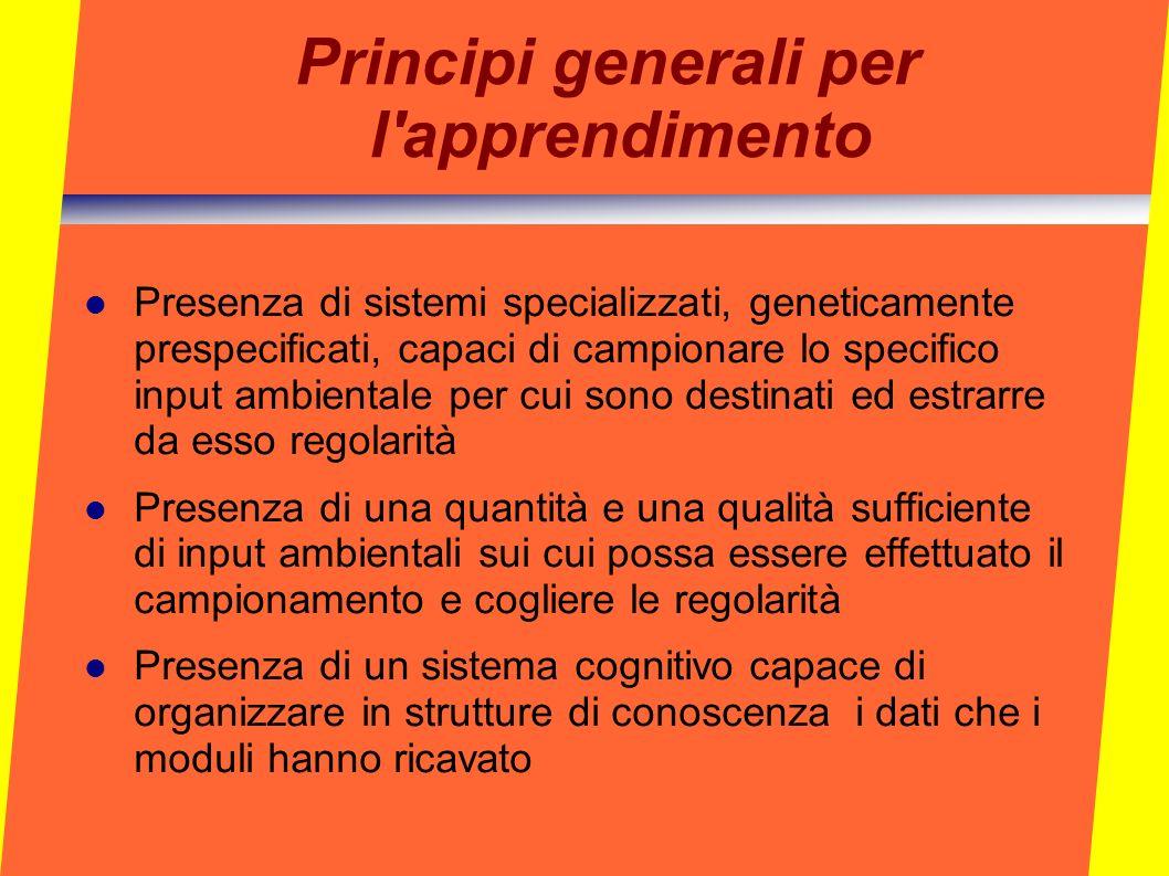Principi generali per l apprendimento