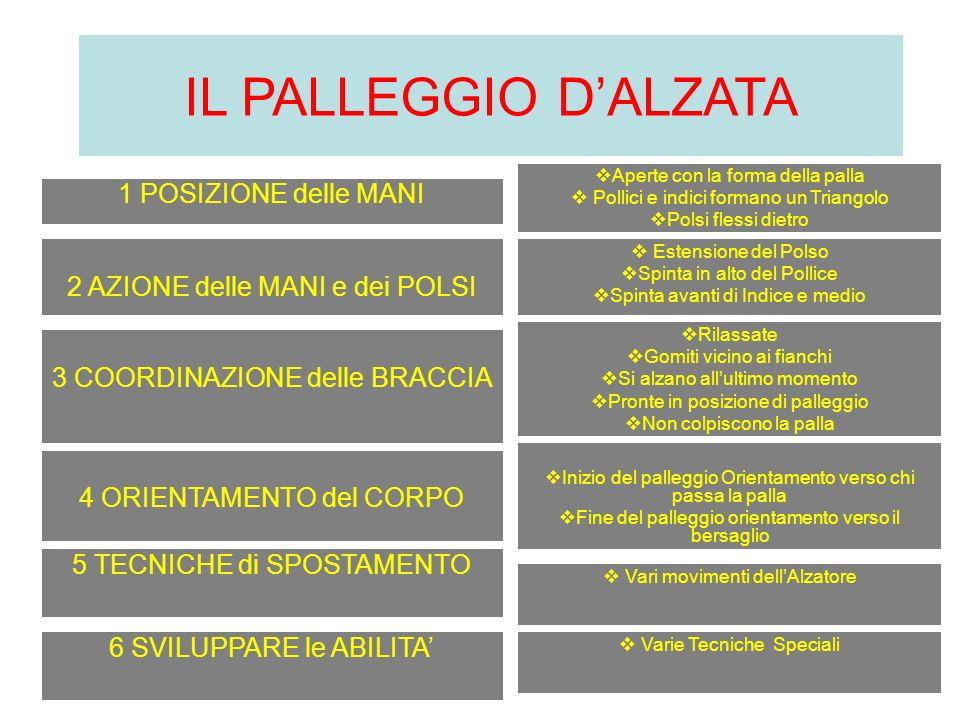 IL PALLEGGIO D'ALZATA 1 POSIZIONE delle MANI