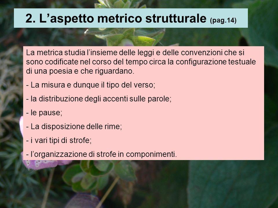 2. L'aspetto metrico strutturale (pag.14)