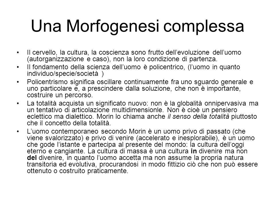 Una Morfogenesi complessa