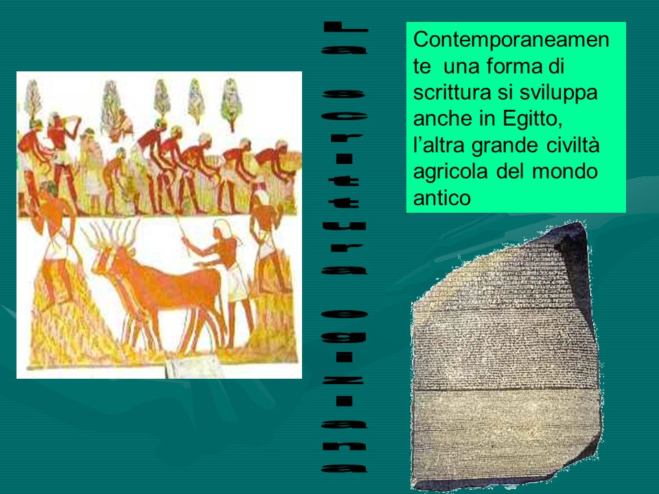 Contemporaneamente una forma di scrittura si sviluppa anche in Egitto, l'altra grande civiltà agricola del mondo antico