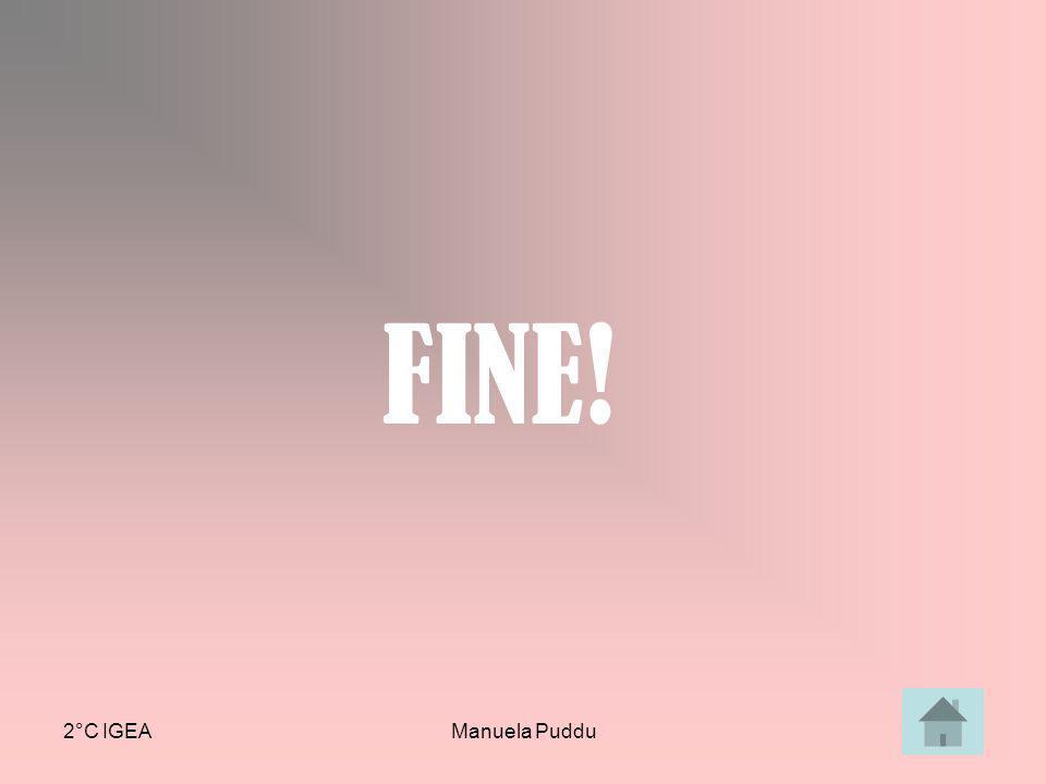 FINE! 2°C IGEA Manuela Puddu