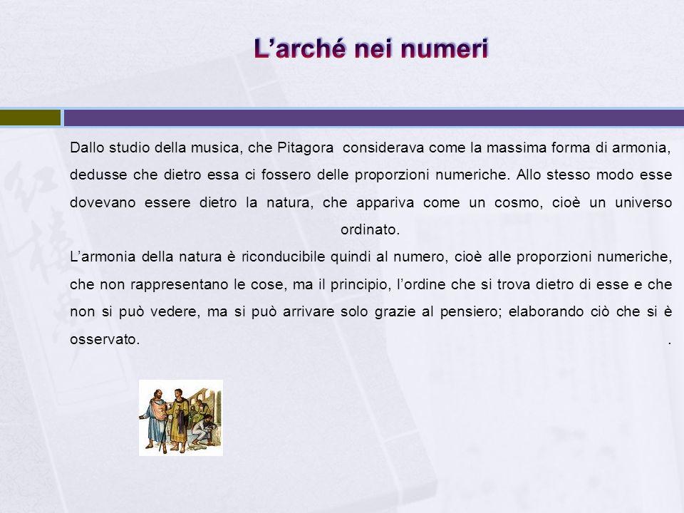 L'arché nei numeri