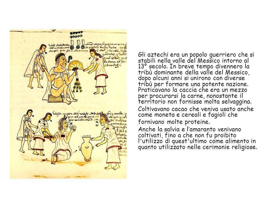 Gli aztechi era un popolo guerriero che si stabili nella valle del Messico intorno al 13° secolo. In breve tempo divennero la tribù dominante della valle del Messico, dopo alcuni anni si unirono con diverse tribù per formare una potente nazione. Praticavano la caccia che era un mezzo per procurarsi la carne, nonostante il territorio non fornisse molta selvaggina.