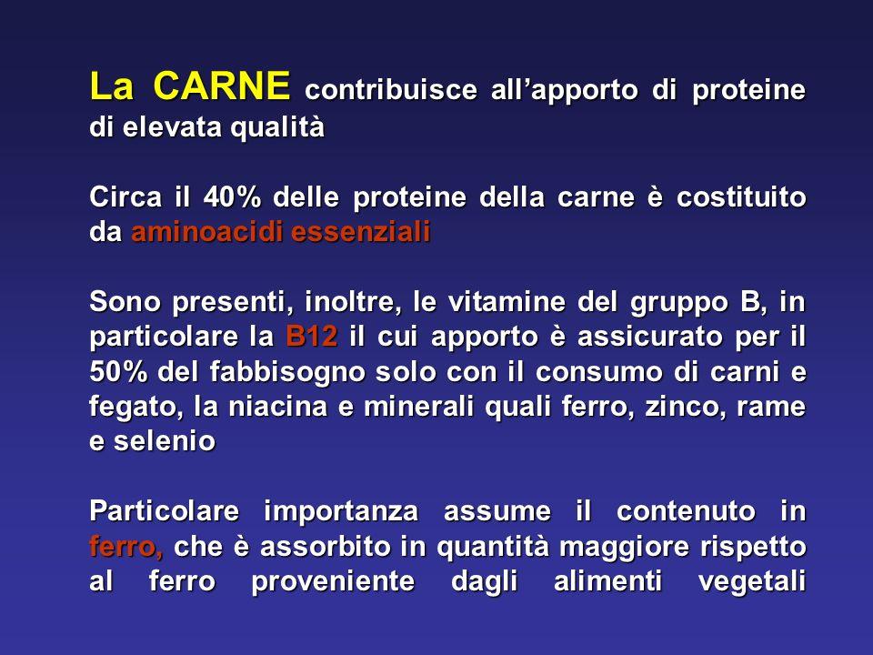 La CARNE contribuisce all'apporto di proteine di elevata qualità