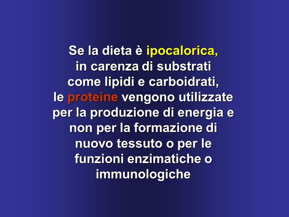 Se la dieta è ipocalorica, in carenza di substrati