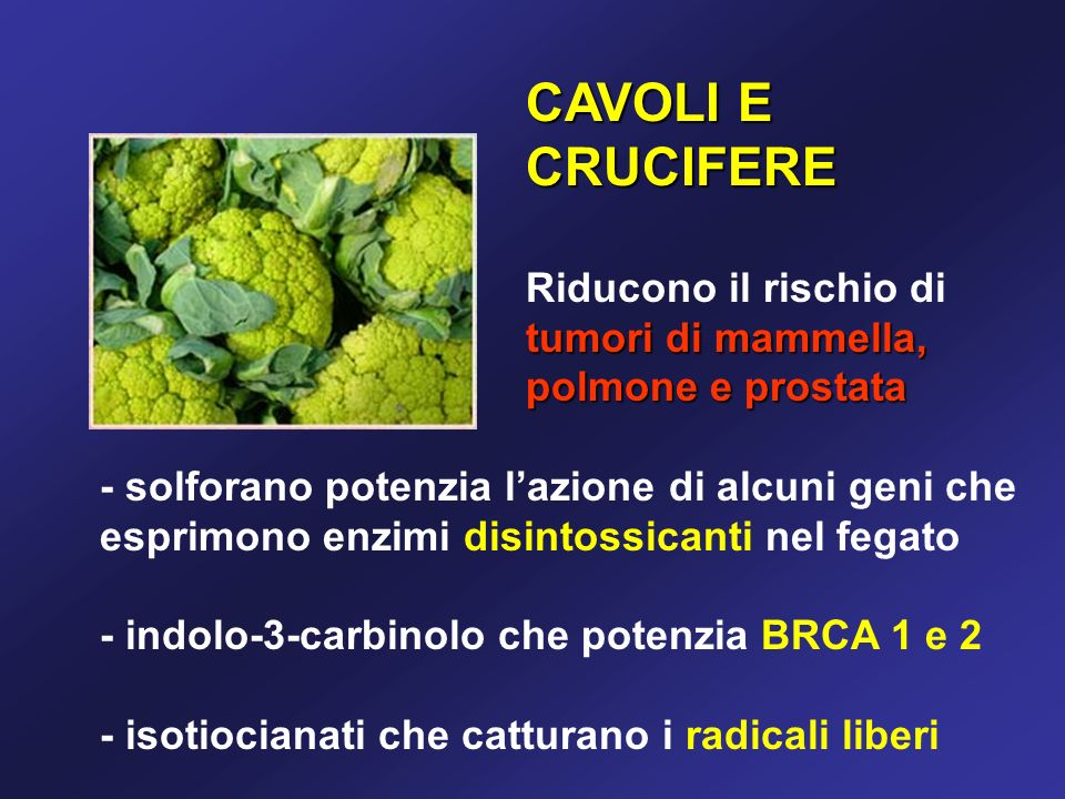 CAVOLI E CRUCIFERE tumori di mammella, polmone e prostata