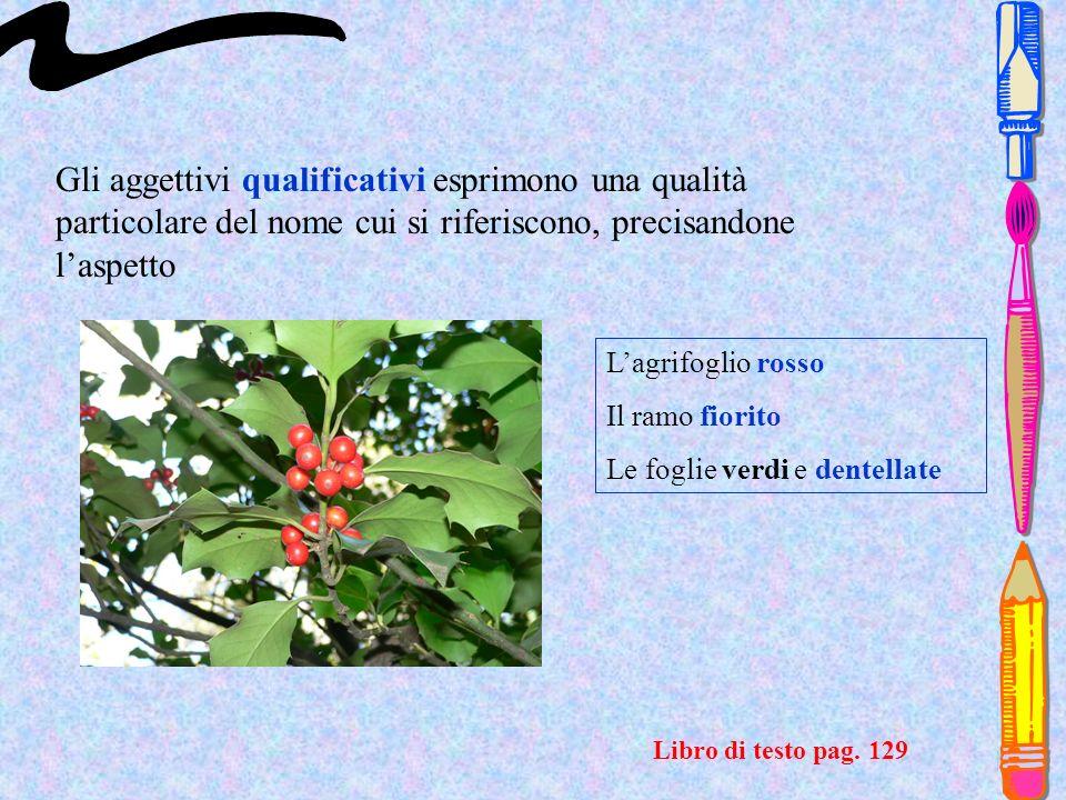 Gli aggettivi qualificativi esprimono una qualità particolare del nome cui si riferiscono, precisandone l'aspetto