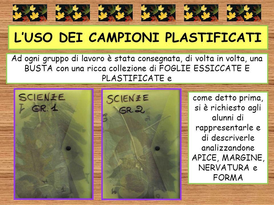L'USO DEI CAMPIONI PLASTIFICATI