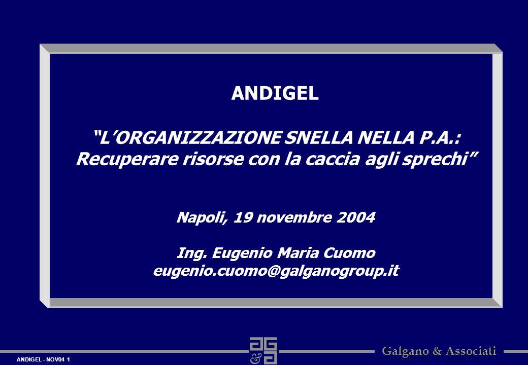 ANDIGEL L'ORGANIZZAZIONE SNELLA NELLA P.A.: