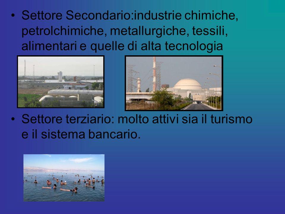 Settore Secondario:industrie chimiche, petrolchimiche, metallurgiche, tessili, alimentari e quelle di alta tecnologia