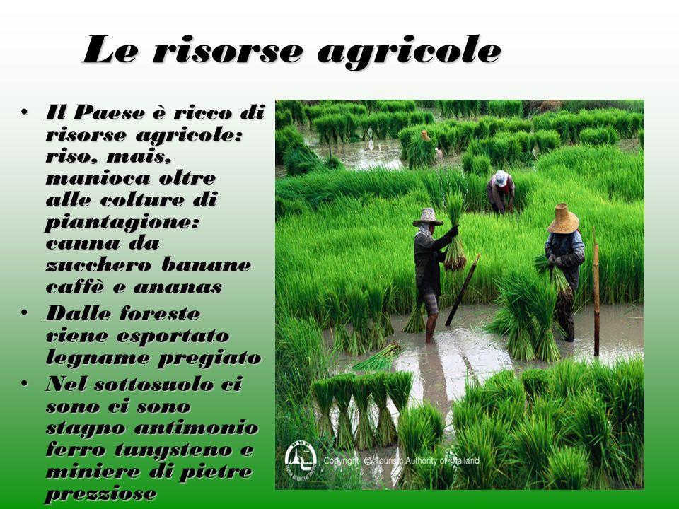 Le risorse agricole