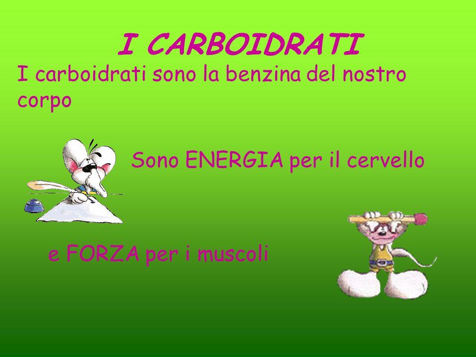 I CARBOIDRATI I carboidrati sono la benzina del nostro corpo