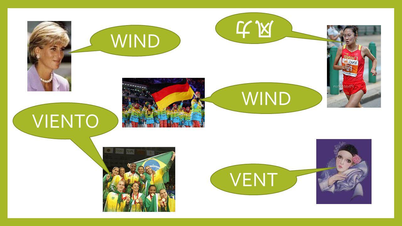 风力 WIND WIND VIENTO VENT