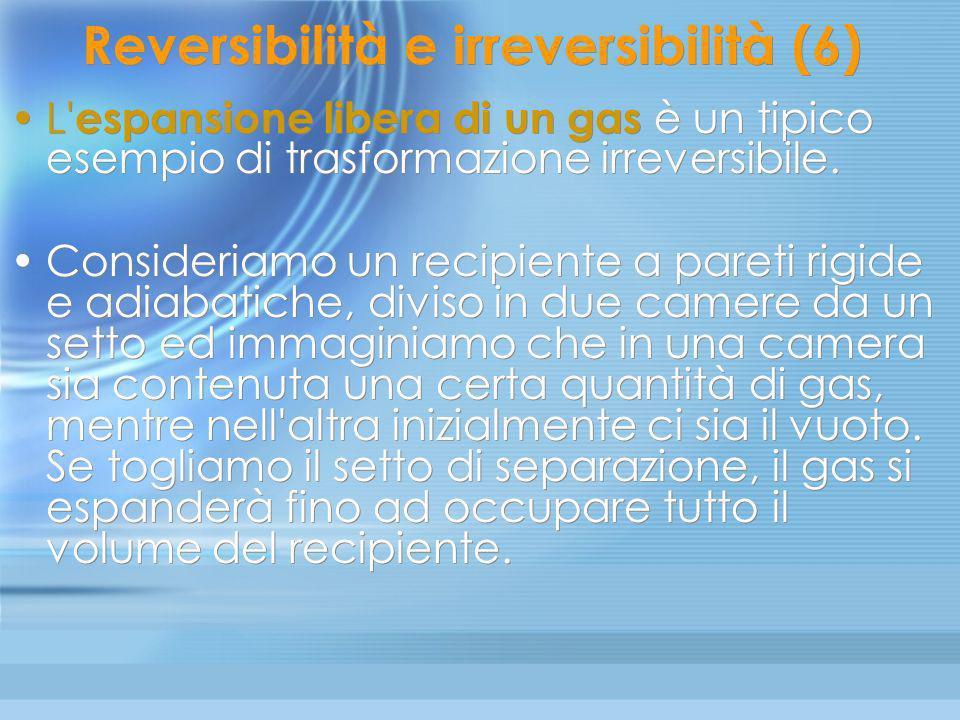 Reversibilità e irreversibilità (6)