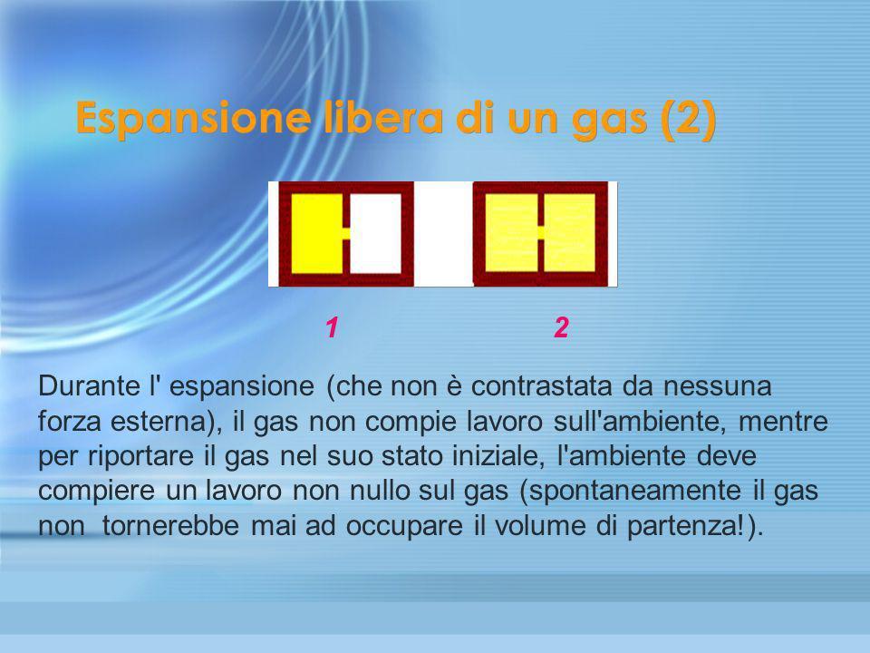 Espansione libera di un gas (2)